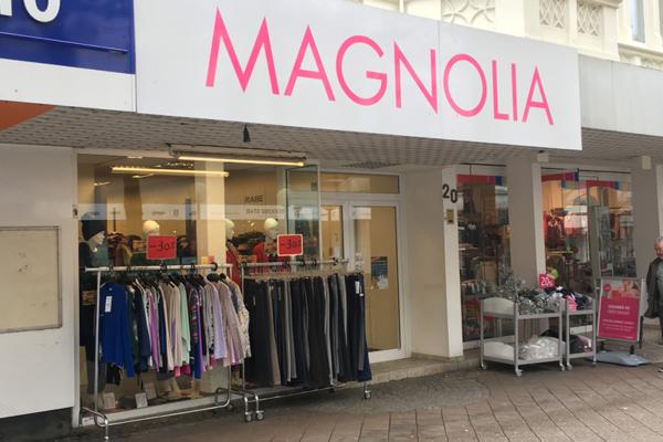 Bild 1 von Magnolia